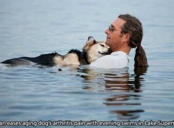 동물을 도와주는 사람들, 우린 한 가족