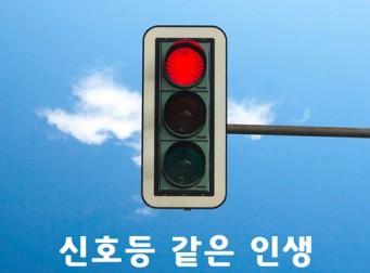 [신호등 같은 인생] – 박성철 산문집
