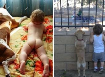"""""""우린 제법 잘 어울려요"""", 아이와 동물이 만났을 때(사진16장)"""