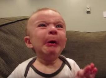 생애 처음으로 레몬 먹은 아기의 반응 (동영상)