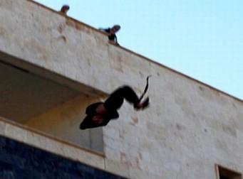 동성애자라는 이유로… 옥상에서 10대 소년 떨어뜨린 ISIS (동영상)