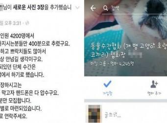 """""""반려동물 성폭행 멤버 모집"""" SNS에 누리꾼 공분"""