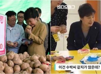 박근혜 대통령의 평소 성격을 짐작할 수 있는 에피소드 7가지 (동영상)