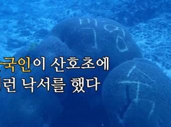 """""""나라 망신 제대로네.."""" 태국 '산호초'에 까지 낙서한 한국인"""