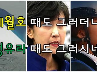 """'정유라 옹호 논란' 정미홍, """"절필 선언한다고 하지 않았나요?""""(사진 3장)"""
