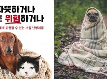반려동물에게 위험할 수 있는 겨울 난방제품 (사진6장)