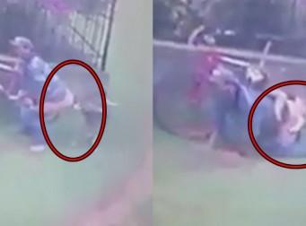 강아지에게 엉덩이 들이대 '섹스' 하려던 남성이 CCTV에 찍혔다 (동영상)