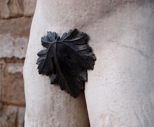 fig-leaf-1657854_960_720