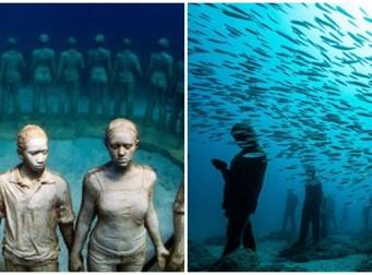 바다 속에서 작품 구경할 수 있는 미술관 (사진 5장)
