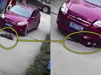 순식간에 벌어진 사고 때문에 차에 깔린 아기 (동영상)