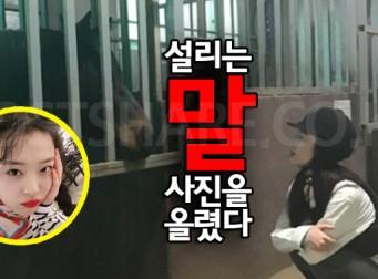 어제자 설리 인스타에 달린 '오늘만 사는' 댓글 (feat.최자)