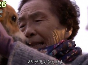 6년 만에 잃어버린 반려견을 다시 찾은 할머니가 보인 눈물 (사진 3장)