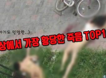 '다윈상 수상' 세상에서 가장 황당한 죽음 TOP10 (동영상)