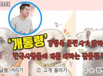 [웹툰] 한국 사람들이 개를 대하는 잘못된 방법