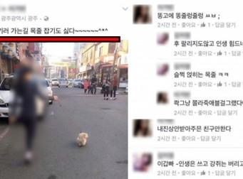 """""""안락사시키러 가는길^^""""…반려견 안락사 인증샷 논란 (사진 4장)"""