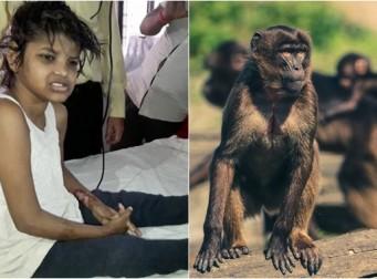 정글서 원숭이들과 함께 살며 네 발로 기어다니던 소녀