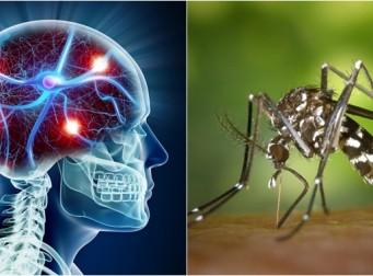 당신이 알지 못했을 치명적인 5가지 질병