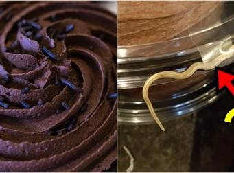 초콜릿 케이크를 주문했는데 딸려온 뜻밖의 덤(?) (사진3장)