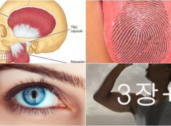 당신이 몰랐을 우리 '몸'에 관한 비밀 7가지 (사진 7장)