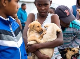 강아지를 구하기 위해 3km를 걸은 소년 (사진4장)