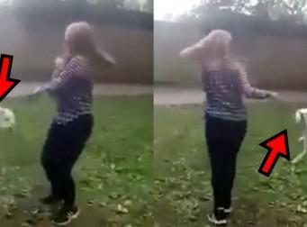 강아지 목줄 잡고 공중에 돌리는 소녀 (동영상)