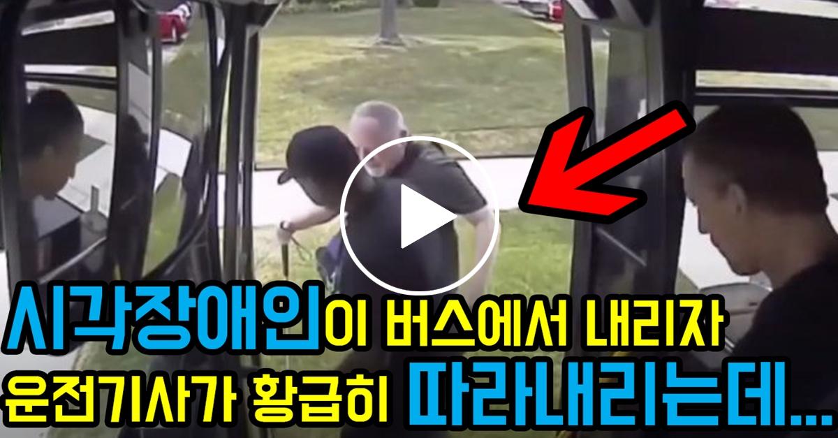 시각장애인이 버스에서 내리자 운전기사가 따라내린 이유