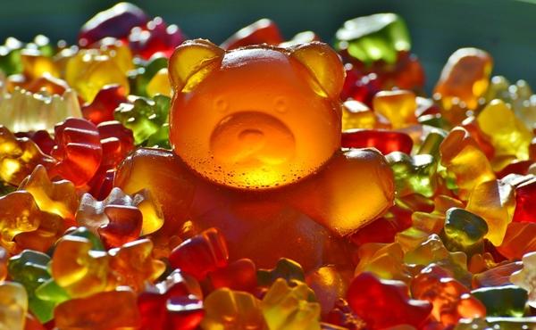 giant-rubber-bear-1089612_960_720